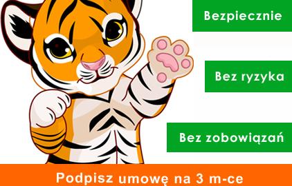 Tygryskowy okres probny kopia